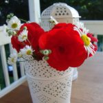 Sweet red and white centrepiece for Canada Day | flourishandknot.com