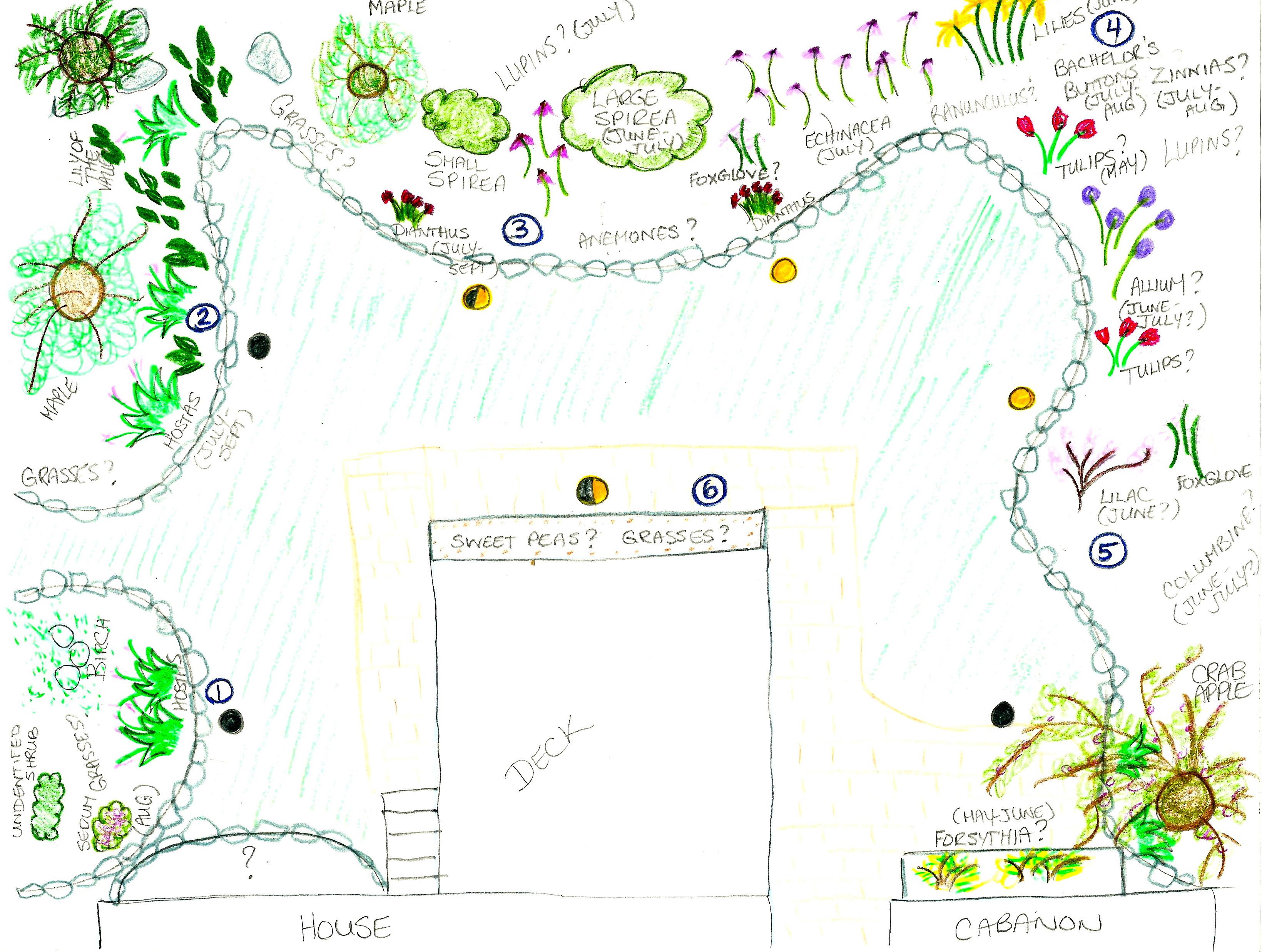 Garden Plans 2015