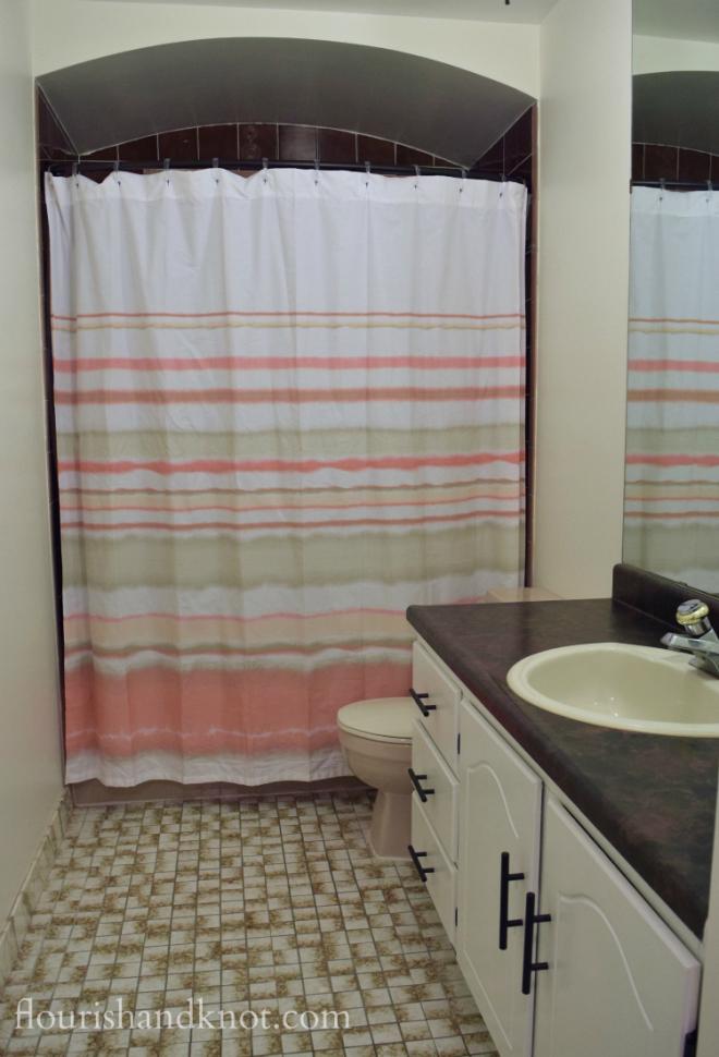 One Room Challenge master bathroom makeover| Week 4 | Vanity Fair?