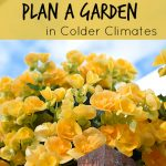 Planning a Garden in Colder Climates (AKA Gardening in the Great White North)
