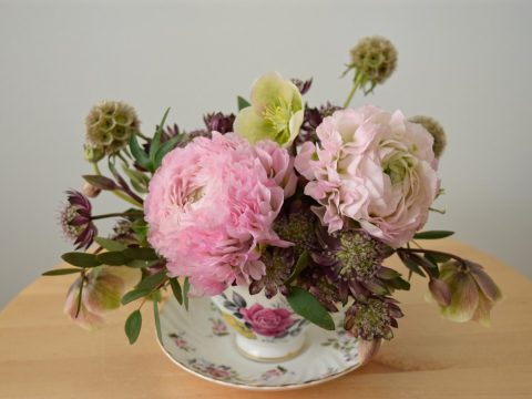 "Teacup arrangement with hellebores, ""Hermione"" ranunculus, astrantia, and scabiosa stellat"
